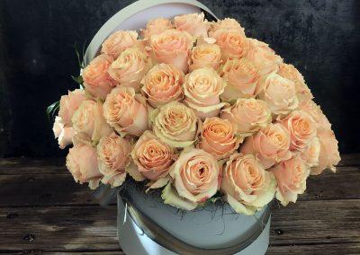 Nancy's-Roses